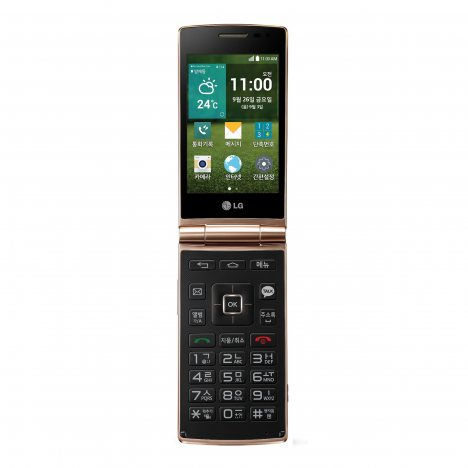 LG Wine Smart D486